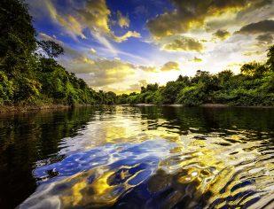 A Amazônia no coração da Igreja